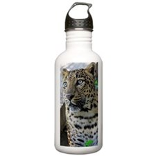 Jett Water Bottle