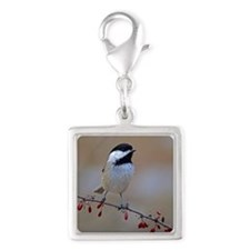 Chickadee on limb 2 Silver Square Charm