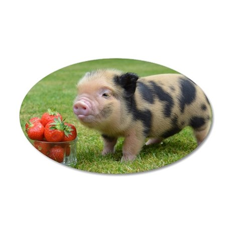 Little micro pig with strawb 35x21 Oval Wall Decal