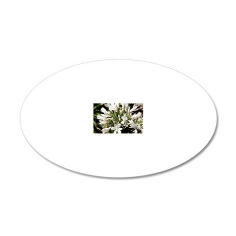 Agapanthus (white) flower in 20x12 Oval Wall Decal