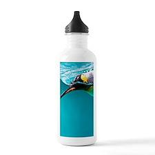 King Penguin swimming  Water Bottle