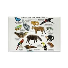 Costa Rica Animals Rectangle Magnet