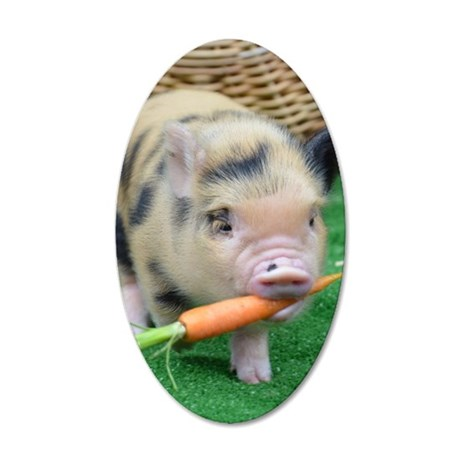 Micro pig with carrot 35x21 Oval Wall Decal
