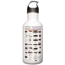 Staphylinidae Poster Water Bottle