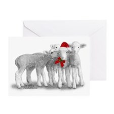 Christmas Hat Lambs Greeting Cards