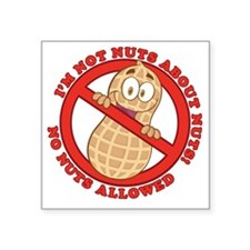 "No Nuts Allowed Square Sticker 3"" x 3"""