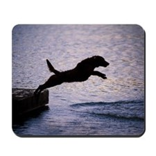 Chesapeake Bay Retriever Leaping In the  Mousepad