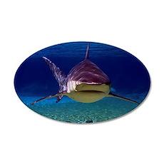 Shark Encounter 35x21 Oval Wall Decal