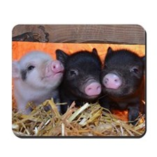THREE LITTLE PIGS Mousepad