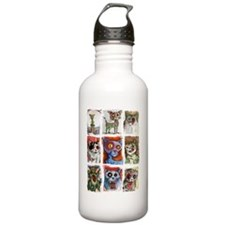 9 zombie cats Water Bottle