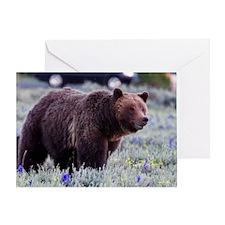 Grizzly Bear 399, Grand Teton Nation Greeting Card