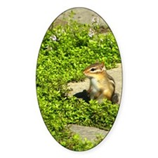 chipmunk ipad3folio Decal