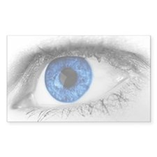 blue-eye art Decal