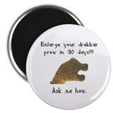 Enlarge your drakkar prow... Magnet