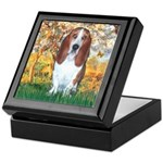 Monet's Spring & Basset Keepsake Box