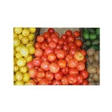 Fruit Stand: Lemons & Tomatoes Rectangle Magnet