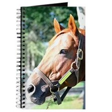 SECRETARIAT Journal