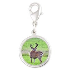 8 pt looking over back Silver Round Charm