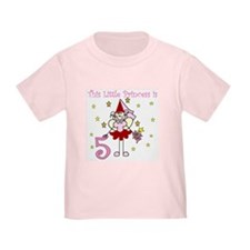 Fairy Princess 5th Birthday T