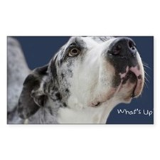 Great Dane Birthday Card Decal