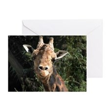 Helaine's Smiling Giraffe Greeting Cards (Pk of 10