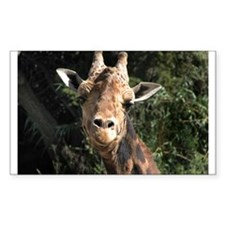Helaine's Smiling Giraffe Decal