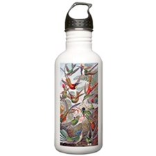 22x14 Exotic Hummingbi Water Bottle
