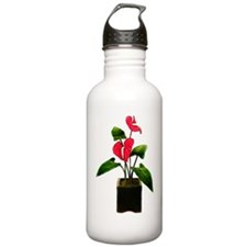 Red Anthurium in Plant Water Bottle