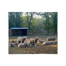 Horned Dorset Sheep Barn Scene early Throw Blanket