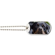 Rottweiler Dog Dog Tags