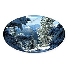 Snowy White Winter - Banff, Alberta Decal