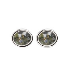 Painted Eagle Family Cufflinks
