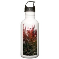 Autumn Burning Sports Water Bottle
