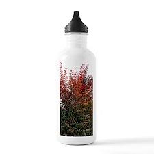 Autumn Burning Water Bottle