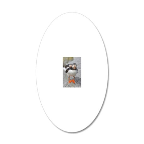ornament_oval 3 20x12 Oval Wall Decal