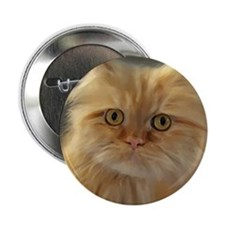 "Cats painting 2.25"" Button (100 pack)"