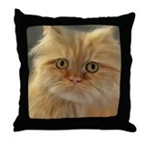 Cool Persian painting Throw Pillow