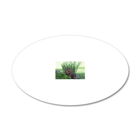 Groundhog in garden 20x12 Oval Wall Decal
