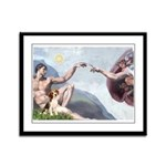 Creation of the Beagle Framed Panel Print
