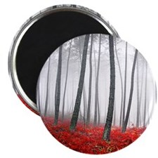 Winter Forest Magnet