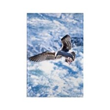 Seagull in flight over white wash Rectangle Magnet