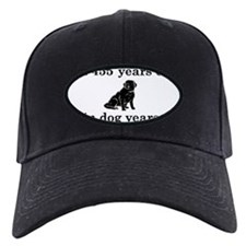 65 birthday dog years lab 2 Baseball Hat
