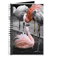 Kissing Flamingos Journal