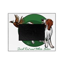 Irish Red and White Setter Picture Frame