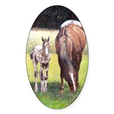 Appaloosa Mare  Foal Portrait Decal