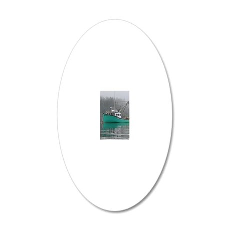 temp_nexus_s_phone_case 6 20x12 Oval Wall Decal