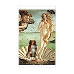 Venus-AussieShep#4 Sticker (Rectangle)