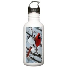 Snow Cardinal Water Bottle