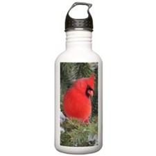 Cardinal Water Bottle