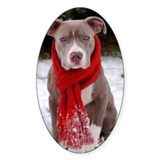 Holiday Pit Bull with Red Scarf Decal